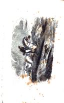 Seite 24