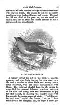 Seite 55