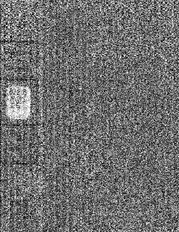 [graphic][subsumed][subsumed][subsumed][subsumed]