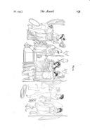 Seite 195