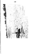 Seite 1123