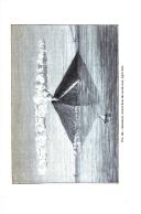 Seite 261