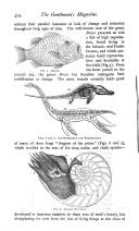 Seite 474