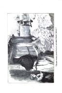 Seite 254