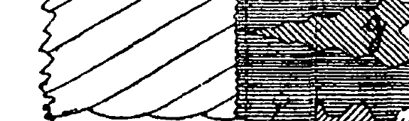 [graphic][graphic][graphic][graphic][graphic]