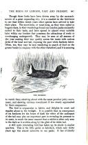 Seite 847