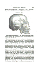 Seite 559