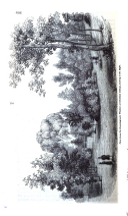 Seite 636