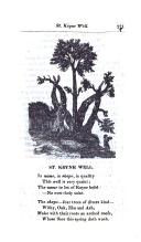 Seite 271