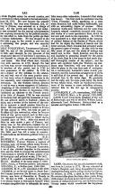 Seite 391